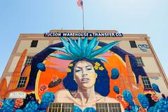 Tucson Warehouse & Transfer Co. Mural (katiemparker) Tags: tucson arizona mural streetart painting color urban