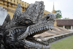 Dragon Statue at Pha That Luang (ollygringo) Tags: city travel tourism statue architecture temple asia southeastasia dragon stupa buddhist capital buddhism laos vientiane phathatluang