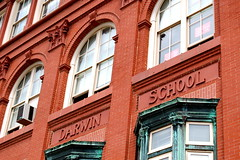 Darwin School (oeil21) Tags: italian spanish preschool logansquare magnet cps elementary reggioemilia worldlanguage publicschool spanishimmersion duallanguage darwinelementaryschool
