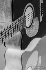 Guitar curve inverted (Broogland - Nicolas Guédon) Tags: camera people blackandwhite bw music man sport person noiretblanc pentax guitar experiment hobby nb flux technical instrument practice technique personne essai gens musique k5 guitarplayer appareil guitare workflow expérience musicplayer personnage personage guitariste