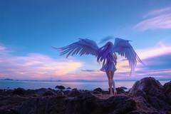 「romantic mauve」 (Ateens Chen) Tags: sunset sea portrait people landscape ateens 天使 ウサギ goodsmilecompany nikond800 nikonafsnikkor24mmf14ged アスキー・メディアワークス