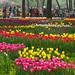 北京植物园