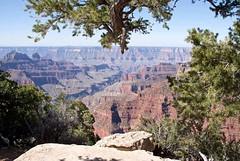 Grand Canyon. North Rim. (arthurpolly) Tags: travel canon landscape eos grandcanyon northrim 50d