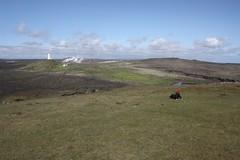Phare d'Islande (thiery49) Tags: june iceland juin nordic phare lighhouse scandinavian islande nordique scandinave