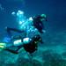 027 - Divers on Triton Thila