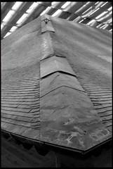Roof of Shosoin treasure house. (HIDE@Verdad) Tags: film 35mm  nikonf