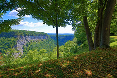 Gorge View At Letchworth (+David+) Tags: wideangle gorge geneseeriver lookingsouth letchworthsp loversview