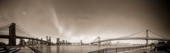 (Webtonic.ch) Tags: newyork brooklyn timesquare brookylnbridge