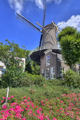 "Molen 't Slot • <a style=""font-size:0.8em;"" href=""http://www.flickr.com/photos/45090765@N05/10023066706/"" target=""_blank"">View on Flickr</a>"