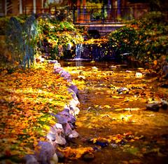 Autumn Stream (Photo Dean) Tags: autumn usa fall leaves utah waterfall ut stream brook lomoish 2013 saltlakecounty