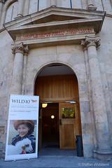 WILD10: 9 October 2013