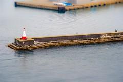 (ffaffal) Tags: sea lake canada water canon eos pier meer bc fake shift columbia victoria british f56 tilt leuchtturm kanada 78mm 400d