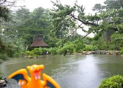 Charizard in Hiroshima, Hiroshima 2 (Shukkei-en Garden) (Kasadera) Tags: toys hiroshima figure pokemon pokmon  charizard   glurak  shukkeiengarden pokemonkids   dracaufeu