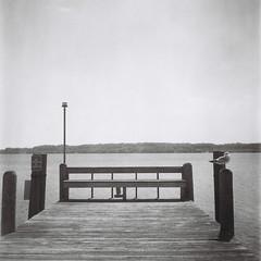 The End. (Rickenbackerglory.) Tags: blackandwhite film rolleiflex marina dock harbour michigan seagull lakemichigan suttonsbay