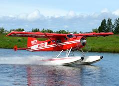 N68083 (John W Olafson) Tags: alaska beaver seaplane dehavilland lakehood dhc2 rusts n68083
