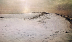 barren ground (silviaON) Tags: winter snow landscape january ie textured oberhausen 2014 halde idream contemporaryartsociety memoriesbook oracope magicunicornverybest magicunicornmasterpiece crisbuscaglialenz