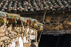Tejas Romanas   ///   Roman Tiles (Walimai.photo) Tags: roof texture textura tile nikon roman tejado romana teja d7000 sahelices saeliceselchico