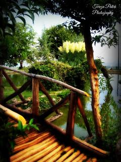 Βridge to paradise