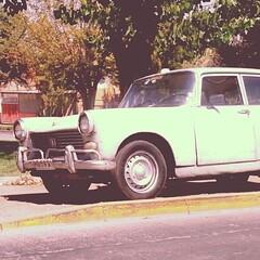 Peugeot 404 - Santiago, Chile  (RiveraNotario) Tags: cars square squareformat autos 1977 iphoneography instagramapp uploaded:by=instagram foursquare:venue=5043ce88e4b0f30042a4ad10
