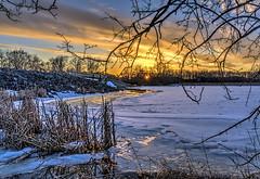 Frozen Sunset (Wes Iversen) Tags: trees winter snow ice lakes bridges fences sunsets grasses hdr dams cookcountyforestpreserve busselake nikkor18300mm busseforestnaturepreserve bussedam