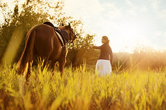 Beautiful woman and  horse (sergeevaphoto) Tags: autumn trees sunset summer horse woman white nature beauty field grass animals vintage joy longhair meadow retro harmony stallion ruralareas petrider brunettemane