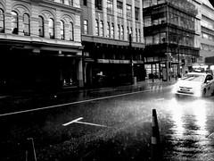 Rainy days are serious business (LadyBiosphere) Tags: street newzealand blackandwhite rain weather wellington downpour 2014 heavyrain flickrandroidapp:filter=none ladybiosphere