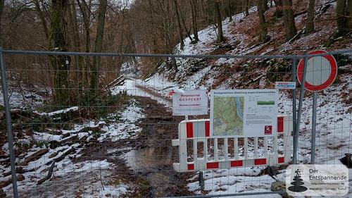Gesperrtes Morgenbachtal im Binger Wald