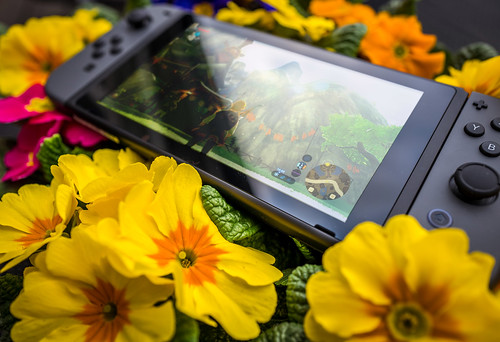 nintendo switch zelda breath wild console flowers... (Photo: Sergey Galyonkin on Flickr)