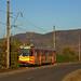 Im Abendlicht ist M8S-Wagen 1008 unterwegs von Ghioroc nach Sâmbăteni