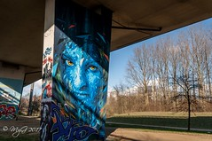 City Watcher (Mike Y. Gyver ( Organize in Albums)) Tags: graffiti blue belgium belgique brussels bruxelles streetart street urbex urban art artwork sigma1020mmf456exdchsm d90 nikon europe exploration tree travel underring mygphotographiewixsitecommyg2017