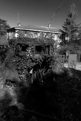 Regard de thierry Ehrmann, auteur de la Demeure du Chaos / Abode of Chaos (Abode of Chaos) Tags: abodeofchaos chaos lespritdelasalamandre salamanderspirit demeureduchaos thierryehrmann ddc 999 groupeserveur taz organmuseum servergroup facteurcheval palaisideal sanctuaire sanctuary artprice saintromainaumontdor portrait painting peinture france museum sculpture architecture maisondartiste art artistshouses streetart sculpturemoderne modernsculpture secret alchimie alchemy landart artbrut artsingulier rawart symbol 911 contemporaryart apocalypse postapocalyptique cyberpunk graffiti vanitas ruins prophecy prophétie container dadaisme outsiderart mystery francmaconnerie freemasonry endoftheworld devastation worldwar anarchy groundzero blackswantheory destroy bombing geopolitique crashculture gesamtkuntwerk visionaryarchitecture monochrome