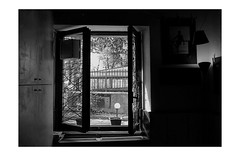 the view (rocami19) Tags: leica dlux5
