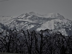 Upper Wenatchee Valley (Pictoscribe) Tags: pictoscribe wenatchee valley dryden