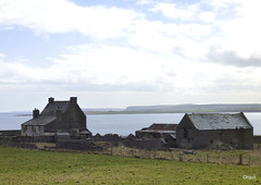 The Very Old Greenwall Farm House (orquil) Tags: greenwall very old large farmhouse attractive wellmaintained threestorey verybig outbuildings sheds some tearandwear rearview rural countryside fields farmland southeast holmparish coastal seaview overlooking holmsound northsea southisles coastlines burray southronaldsay islands maritime sunny april afternoon spring sunshine mixed nice sky cloudscape orkney scotland uk unitedkingdom greatbritain orcades interesting outlook scenery memorable beautiful eastmainland