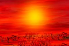 YOU´LL NEVER BE ALONE. (Viktor Manuel 990.) Tags: sunset ocaso sky cielo sun sol brightcolors coloresbrillantes digitalart artedigital nature naturaleza querétaro méxico victormanuelgómezg
