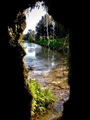 Angoli nascosti (ioriogiovanni10) Tags: natura coolpix nikon verde parco green grotta