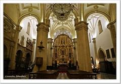Catedral de la Natividad de Nuestra Señora- Baeza (Lourdes S.C.) Tags: catedrales catedraldebaeza baeza arquitectura renacentista renacimiento interiores provinciadejaén