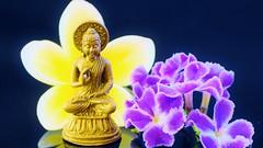 Macro Monday's - Made of Metal (sylviamay1963) Tags: macromondaysmadeofmetal buddha frangipani purple yellow white black perspex flower fleur brass metal vietnam hoian reflection geishagirl