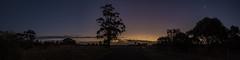 Craigburn Farm Sunset (Anthony Kernich Photo) Tags: adelaide adelaidehills adl southaustralia sa australia sunset landscape photo photograph sundown night dark sky tree silhouette olympus olympusem10 olympusomd panorama pano panoramic sturtgorge park craigburn p