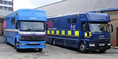 5351 - Lancs Police - PO53 DHU & PN63 RZJ - 065 (Call the Cops 999) Tags: uk gb united kingdom 999 112 emergency service services vehicle vehicles lancashire police constabulary 101 policing law enforcement burnley saturday 1 april 2017 mercedes benz iveco eurocargo horse horses mounted unit section box po53 dhu pn63 rzj