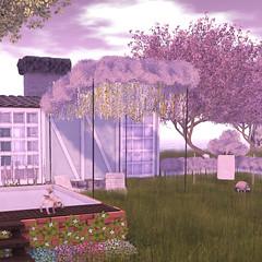 #118 (Prettybubbles.) Tags: littlebranch sl secondlife lagom fawnyheart 3dtrees seasonstory limt8 wereclosed