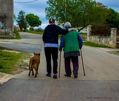 Doing a walk... (patrik_zubaj) Tags: istria istra croatia europe village canon eos600d efs1855mm earth blue green daylight photography walk nature outdoor colors people pets dog