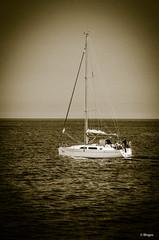 2016_Rügen_105 (BIngo Schwanitz) Tags: 2016 aareiserügen2016 bingoschwanitz bingos bootschiff bootsfahrt d7000 nikon nikonafs70–200mm128gedvrii nikond7000 ostsee outdoor rügen segelboot