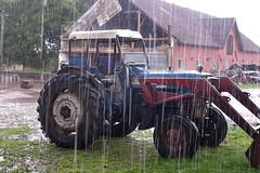 Heavy rain (Steenjep) Tags: regn rain vejr weather karup engbjerggaard ford 4000 traktor tractor ford4000