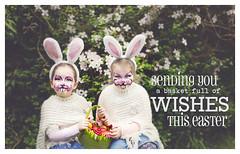 Happy Easter (explored 15/04/2017) (Sigita JP) Tags: bunnies easter eggs funnyface cute card