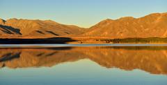 Te Kapo lake twilight (T Ξ Ξ J Ξ) Tags: newzealand aoraki mountcook d750 nikkor teeje nikon2470mmf28 tekapo lake day
