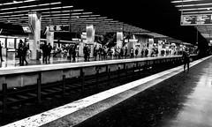 2017-04-04 – Les quais (Ibrahim Maalouf) (Robert - Photo du jour) Tags: avril 2017 regarddunjour lesquais ibrahimmaalouf métro rer quai nb noiretblanc défense noir blanc seule personne