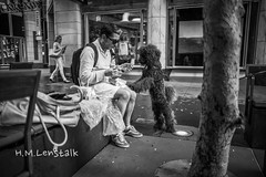 MONO9717 (h.m.lenstalk) Tags: leica m typ 240 summilux summiluxm 28mm 28 f14 14 114 11428 oz aussie australia australian street sydney people urban life city asph black white monochrome