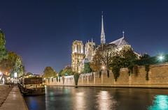 Fall in love (aurlien.leroch) Tags: france paris notredame cathédrale bluehour cityscape nikon stars night love