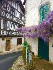 Charroux, Vienne, France (surreydock) Tags: vienne maison house flowers blossoms timberframe colombages village